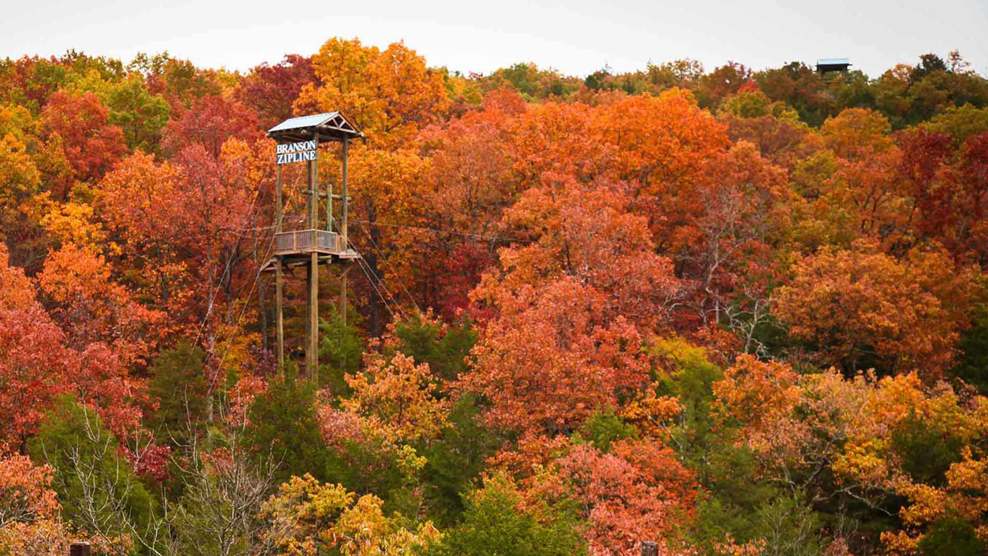 A tower at Branson Zipline surrounded by trees with orange leaves